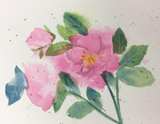 pink watercolor lift