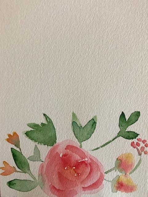 expressive rose&co